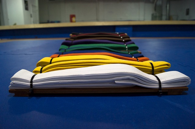 Photo of coloured belts