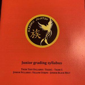 Junior Syllabus Booklet